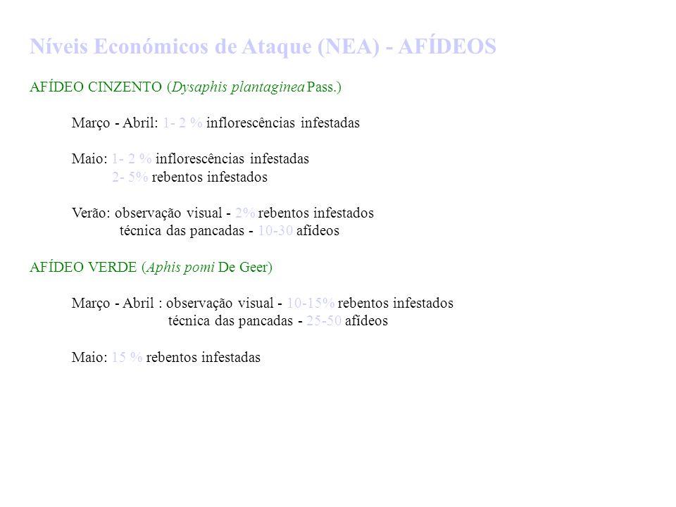 Níveis Económicos de Ataque (NEA) - AFÍDEOS