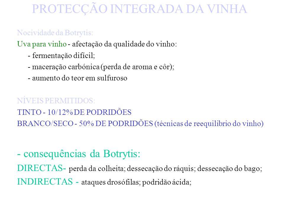 PROTECÇÃO INTEGRADA DA VINHA