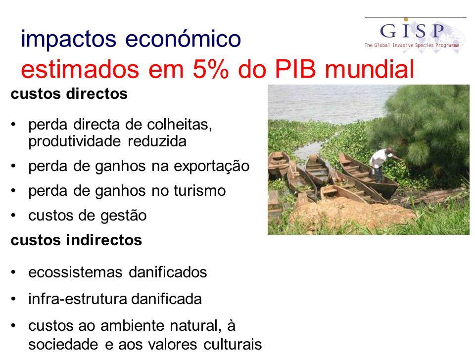 impactos económico estimados em 5% do PIB mundial