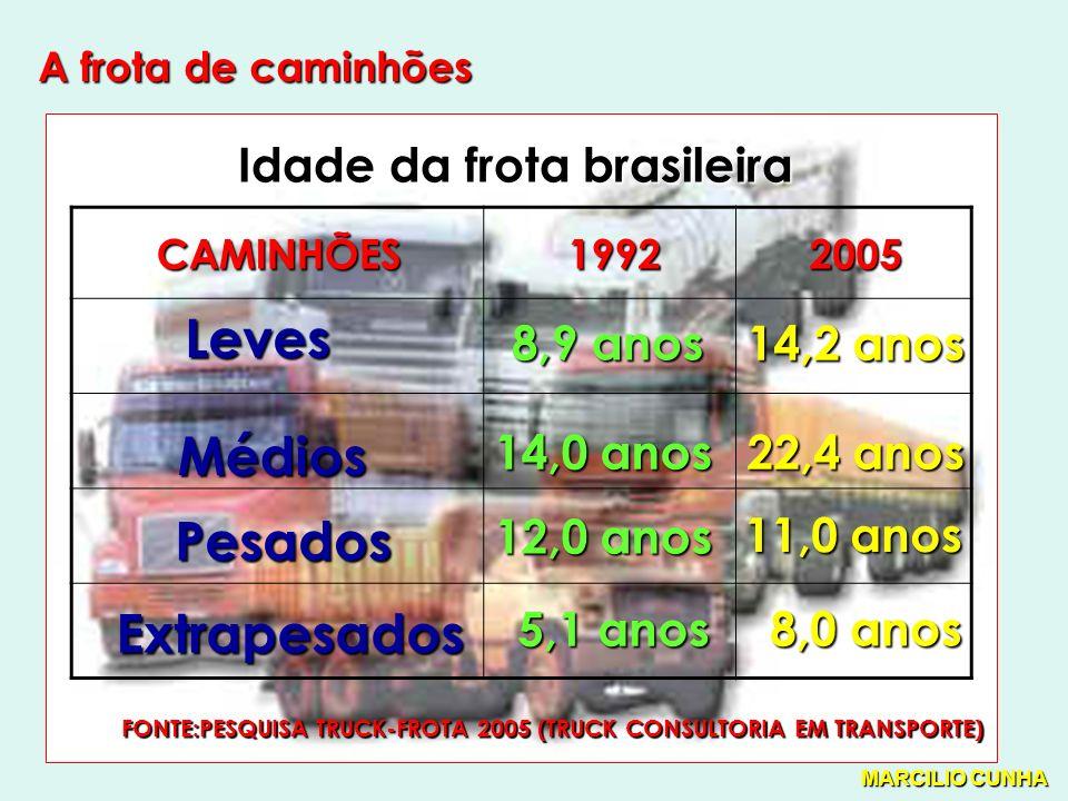 Leves Médios Pesados Extrapesados Idade da frota brasileira 8,9 anos