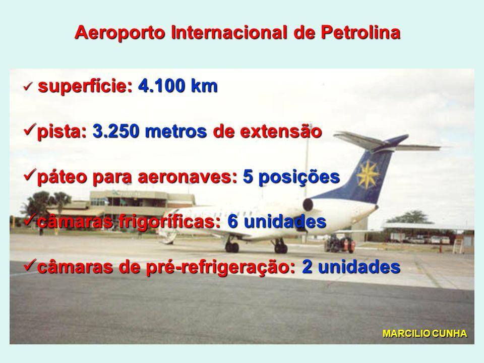 Aeroporto Internacional de Petrolina