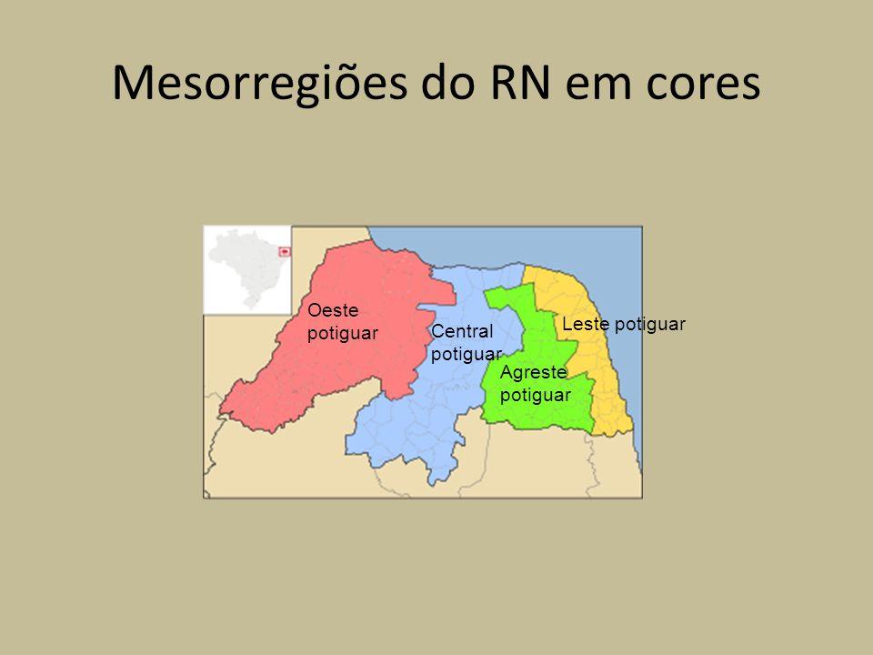 Mesorregiões do RN em cores