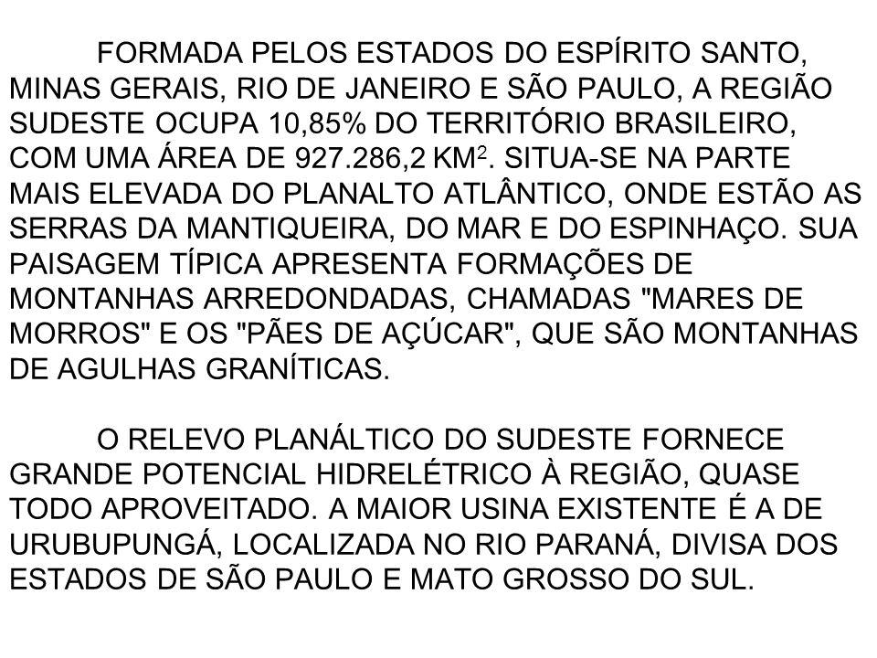 FORMADA PELOS ESTADOS DO ESPÍRITO SANTO, MINAS GERAIS, RIO DE JANEIRO E SÃO PAULO, A REGIÃO SUDESTE OCUPA 10,85% DO TERRITÓRIO BRASILEIRO, COM UMA ÁREA DE 927.286,2 KM2.
