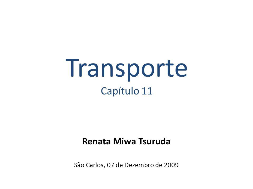 Renata Miwa Tsuruda São Carlos, 07 de Dezembro de 2009