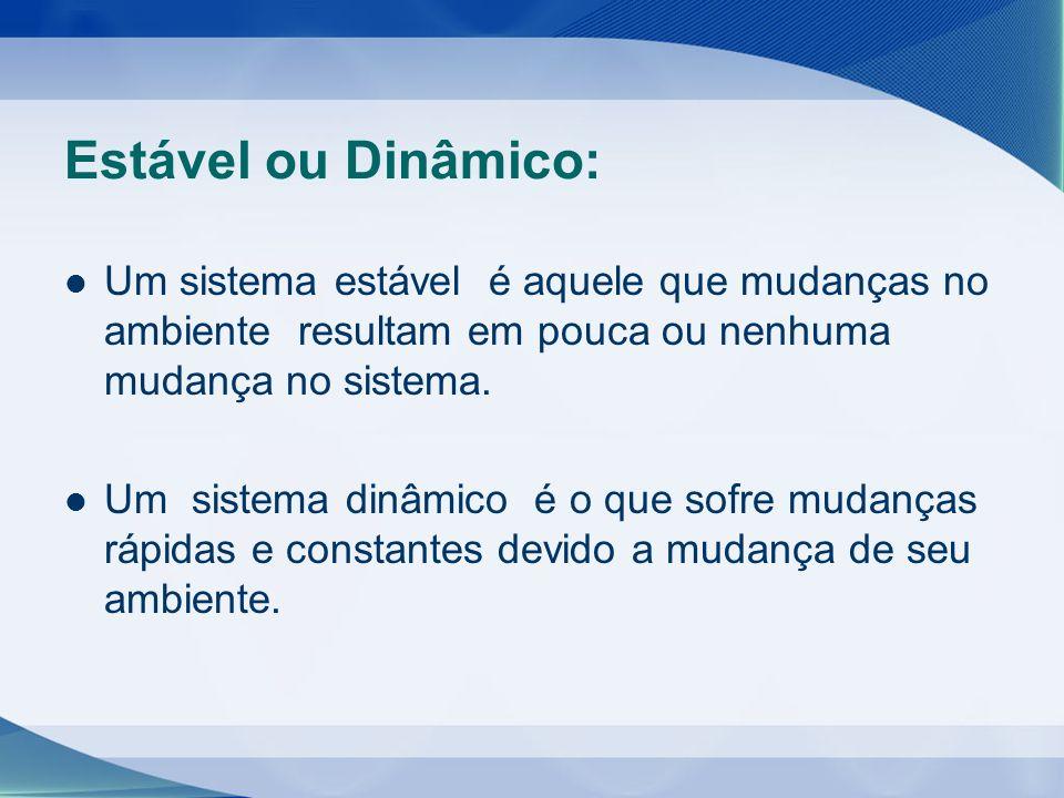 Estável ou Dinâmico: Um sistema estável é aquele que mudanças no ambiente resultam em pouca ou nenhuma mudança no sistema.