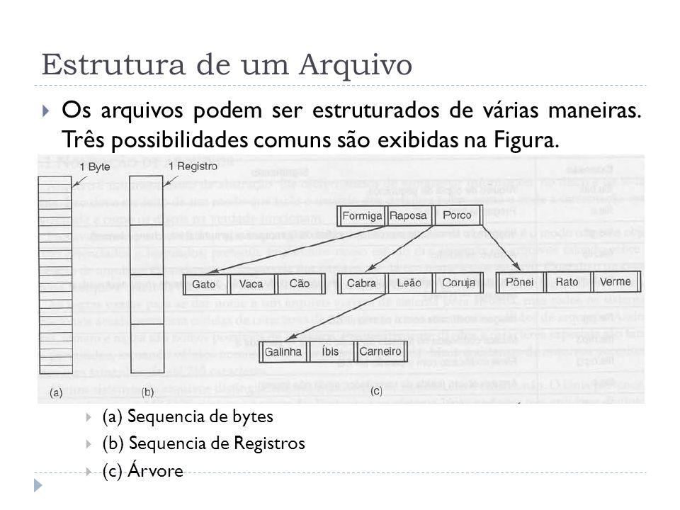 Estrutura de um Arquivo