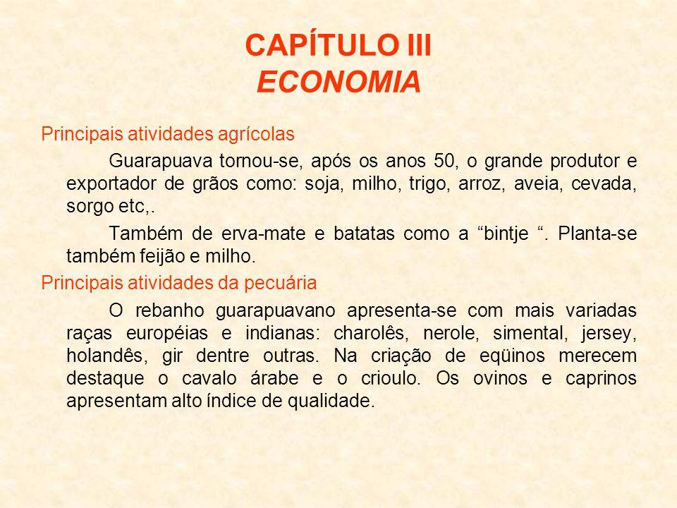 CAPÍTULO III ECONOMIA Principais atividades agrícolas