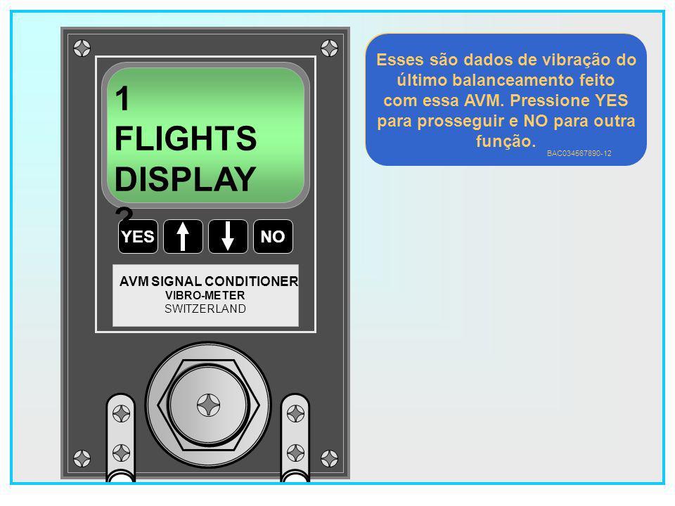 1 FLIGHTS DISPLAY Esses são dados de vibração do