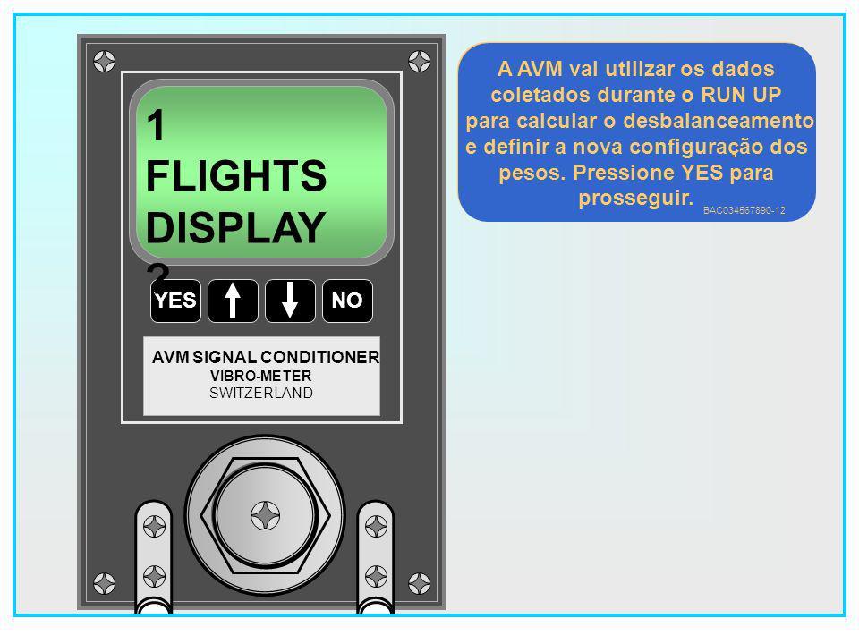 1 FLIGHTS DISPLAY A AVM vai utilizar os dados