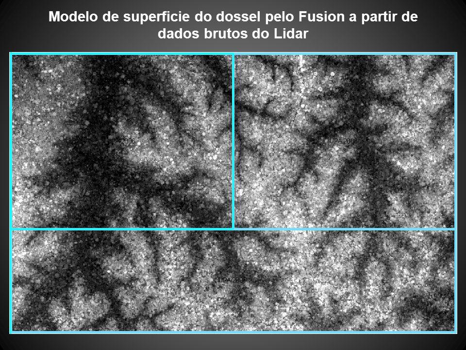 Modelo de superficie do dossel pelo Fusion a partir de dados brutos do Lidar