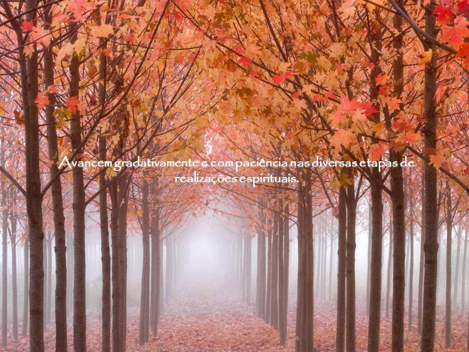 Avancem gradativamente e com paciência nas diversas etapas de realizações espirituais.