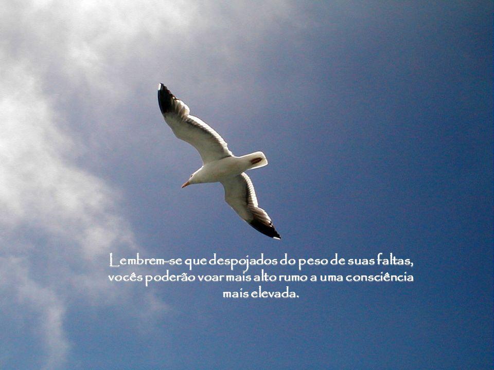 Lembrem-se que despojados do peso de suas faltas, vocês poderão voar mais alto rumo a uma consciência mais elevada.