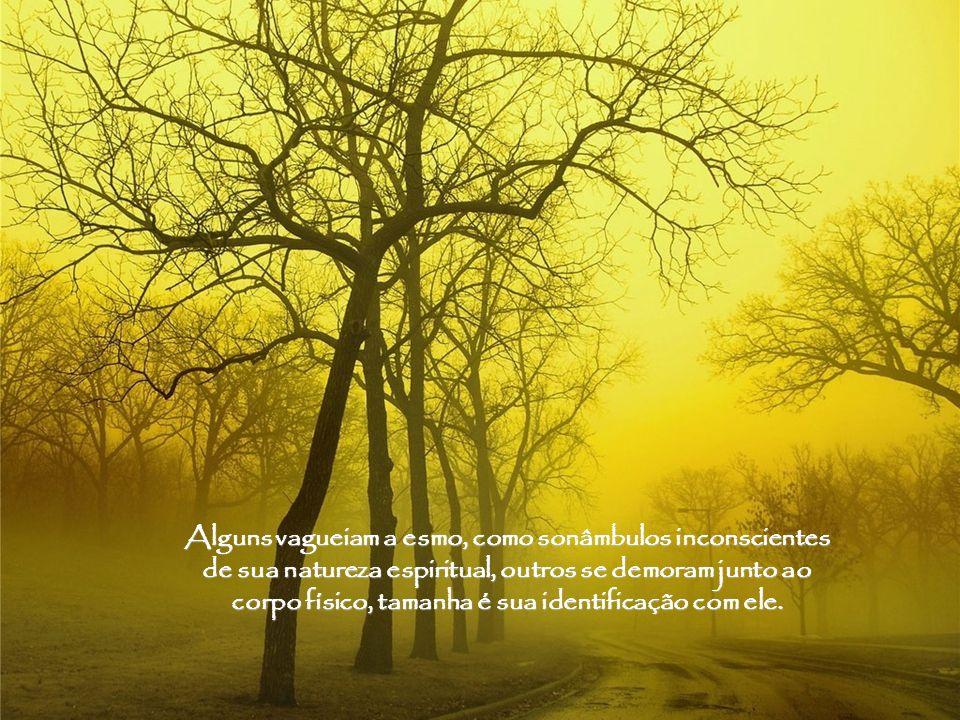 Alguns vagueiam a esmo, como sonâmbulos inconscientes de sua natureza espiritual, outros se demoram junto ao corpo físico, tamanha é sua identificação com ele.