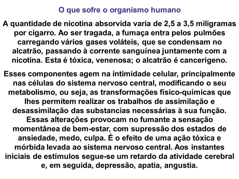 O que sofre o organismo humano