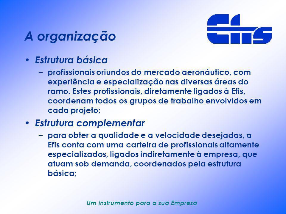 A organização Estrutura básica Estrutura complementar