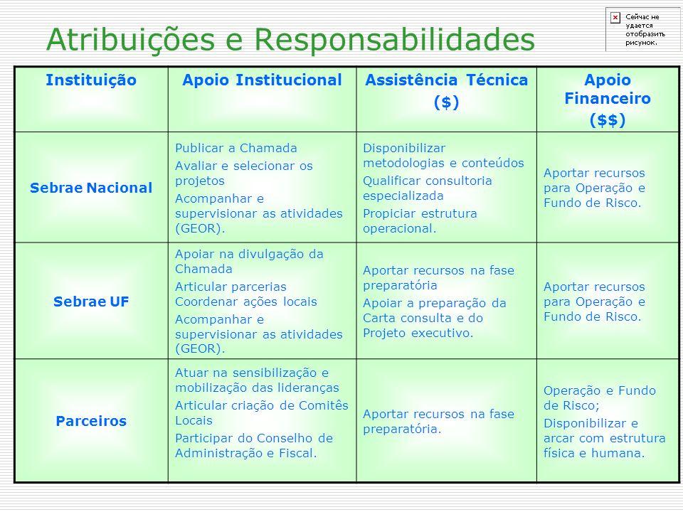 Atribuições e Responsabilidades