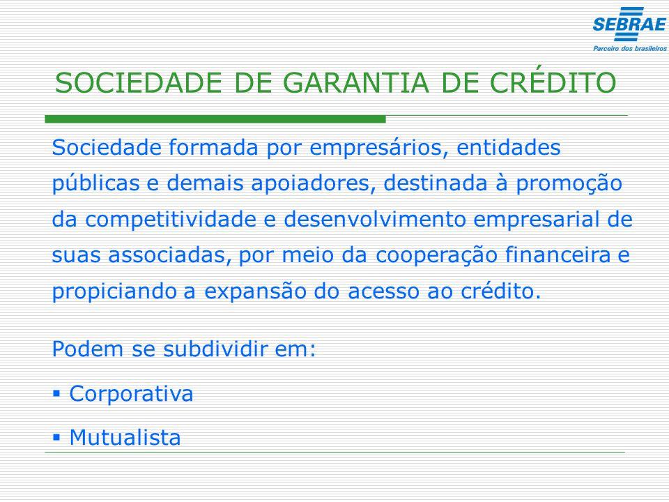SOCIEDADE DE GARANTIA DE CRÉDITO