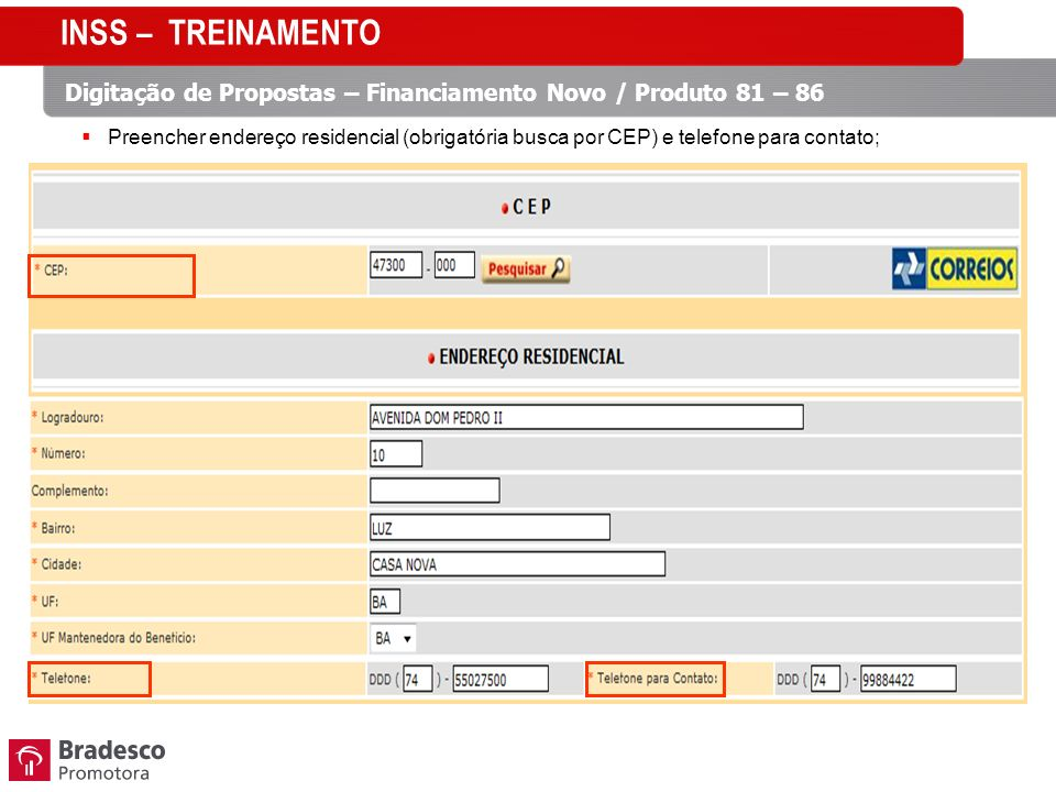 INSS – TREINAMENTO Digitação de Propostas – Financiamento Novo / Produto 81 – 86.