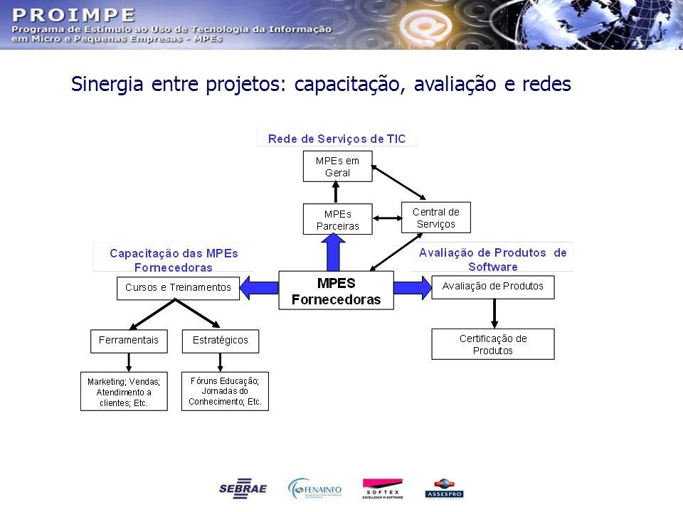 Sinergia entre projetos: capacitação, avaliação e redes
