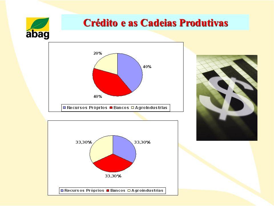 Crédito e as Cadeias Produtivas