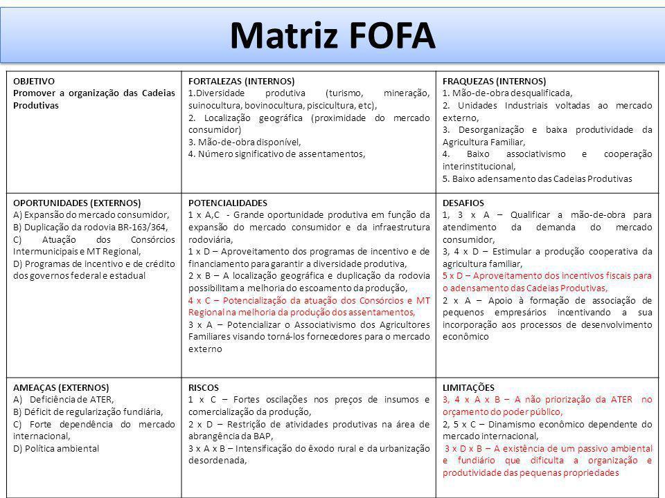 Matriz FOFA OBJETIVO Promover a organização das Cadeias Produtivas