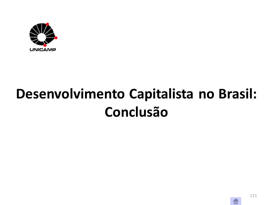 Desenvolvimento Capitalista no Brasil: Conclusão