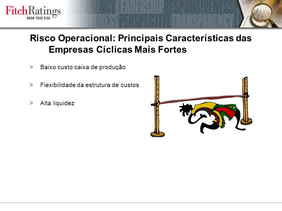 Risco Operacional: Principais Características das Empresas Cíclicas Mais Fortes