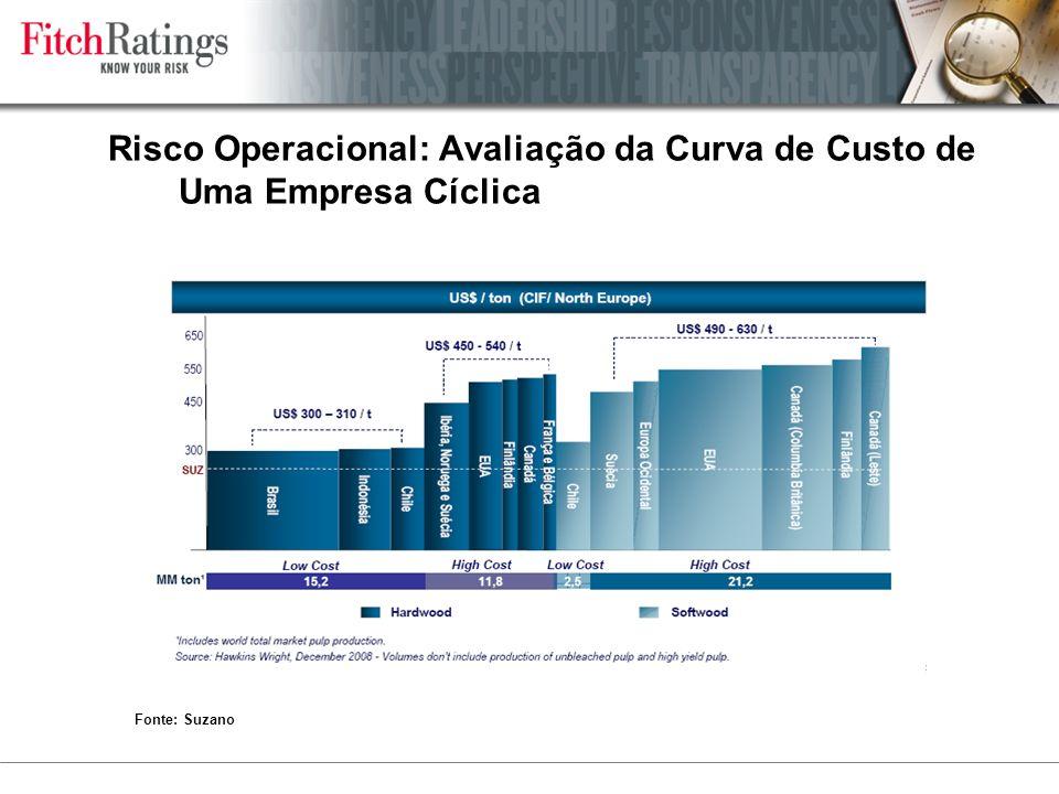 Risco Operacional: Avaliação da Curva de Custo de Uma Empresa Cíclica