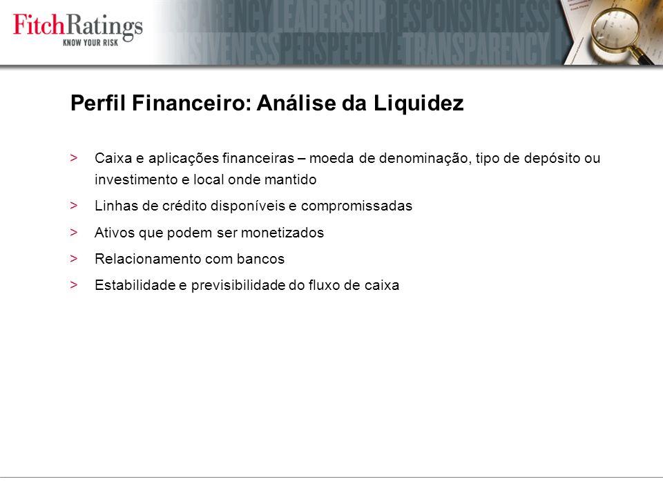 Perfil Financeiro: Análise da Liquidez