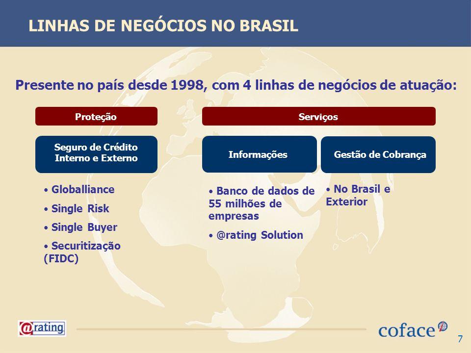 LINHAS DE NEGÓCIOS NO BRASIL