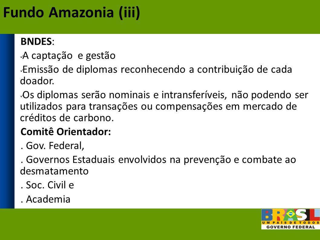 Fundo Amazonia (iii) BNDES: A captação e gestão