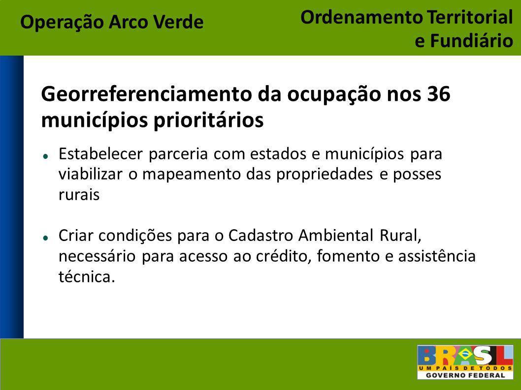 Georreferenciamento da ocupação nos 36 municípios prioritários