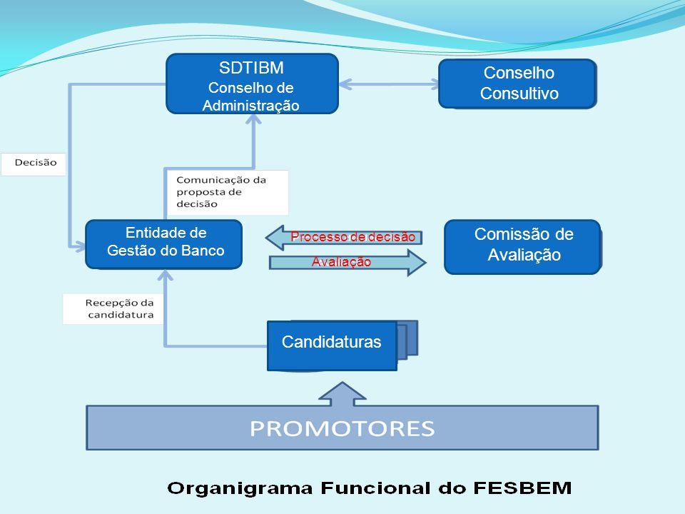 SDTIBM Conselho Consultivo Comissão de Avaliação Candidaturas