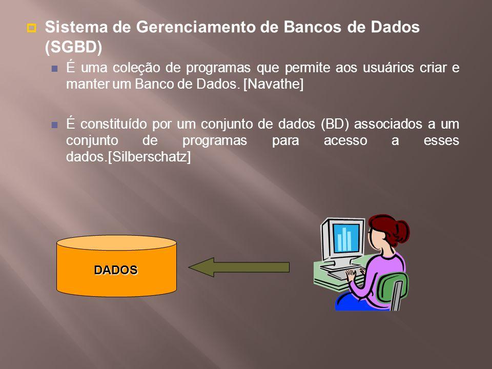 Sistema de Gerenciamento de Bancos de Dados (SGBD)
