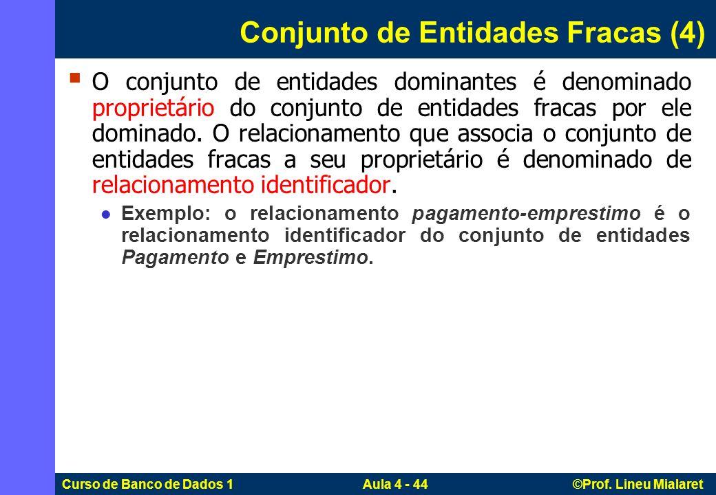 Conjunto de Entidades Fracas (4)