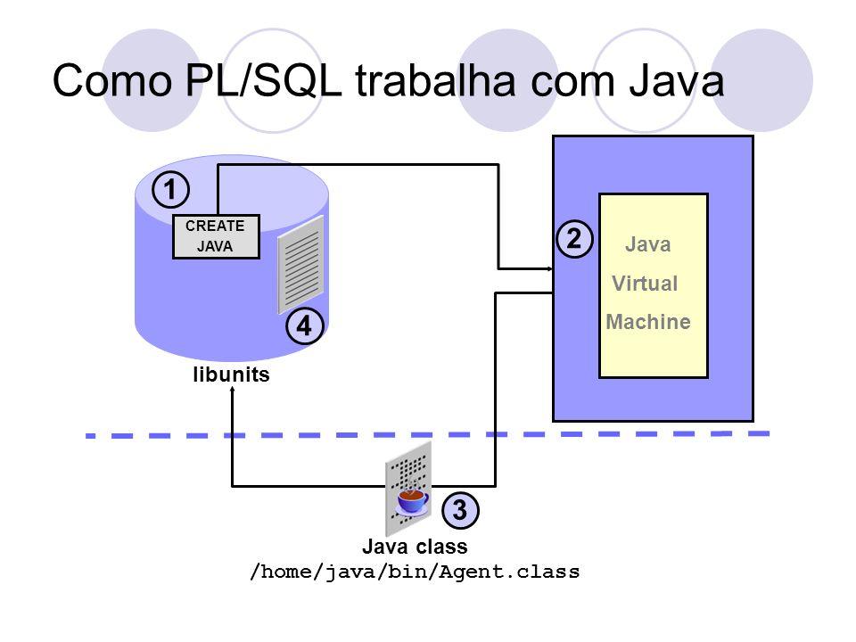 Como PL/SQL trabalha com Java