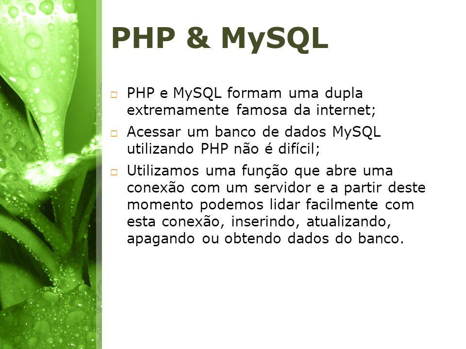 PHP & MySQL PHP e MySQL formam uma dupla extremamente famosa da internet; Acessar um banco de dados MySQL utilizando PHP não é difícil;