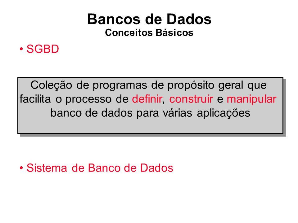 Bancos de Dados Conceitos Básicos