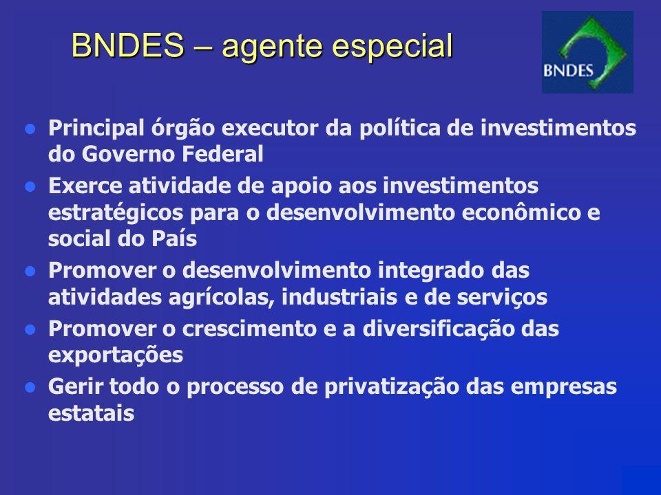 BNDES – agente especial