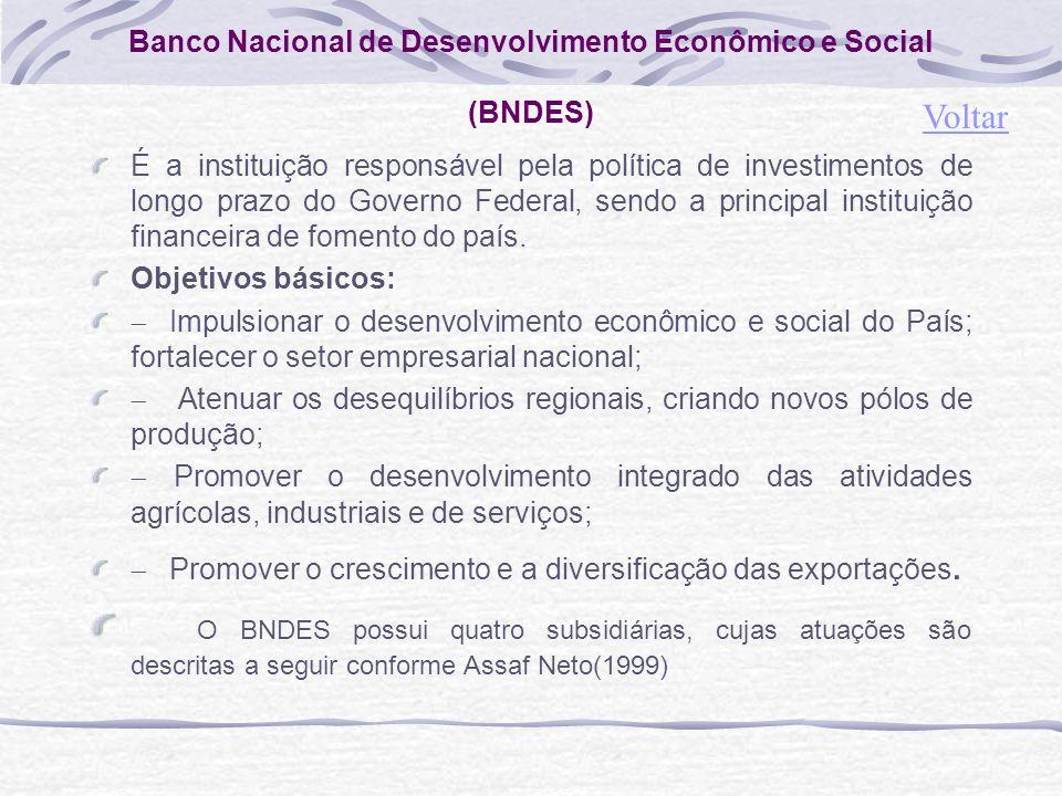 Banco Nacional de Desenvolvimento Econômico e Social (BNDES)