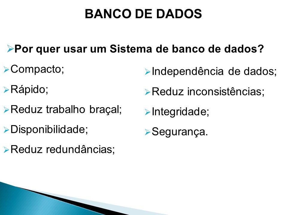 BANCO DE DADOS Por quer usar um Sistema de banco de dados Compacto;