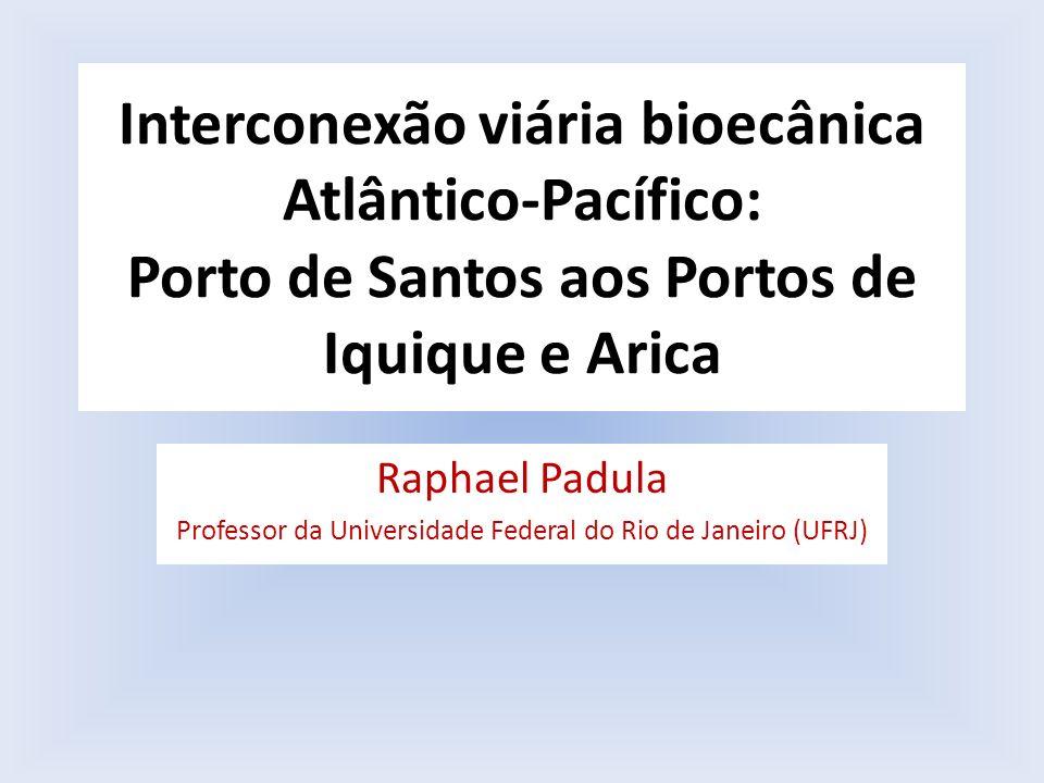 Professor da Universidade Federal do Rio de Janeiro (UFRJ)