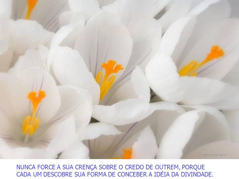 NUNCA FORCE A SUA CRENÇA SOBRE O CREDO DE OUTREM, PORQUE