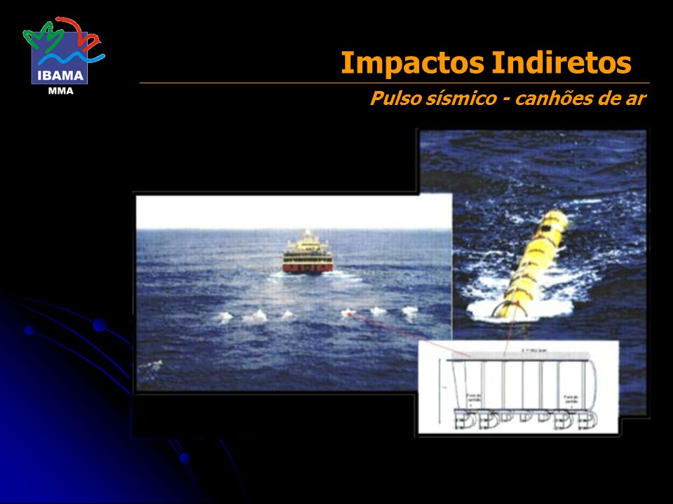 Impactos Indiretos Pulso sísmico - canhões de ar