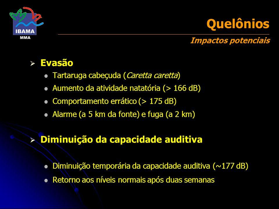 Quelônios Impactos potenciais