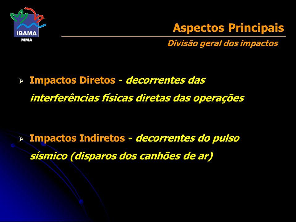 Aspectos Principais Divisão geral dos impactos. Impactos Diretos - decorrentes das interferências físicas diretas das operações.