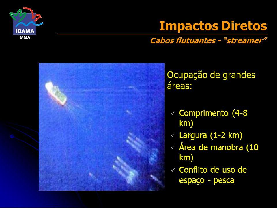 Impactos Diretos Ocupação de grandes áreas: Comprimento (4-8 km)