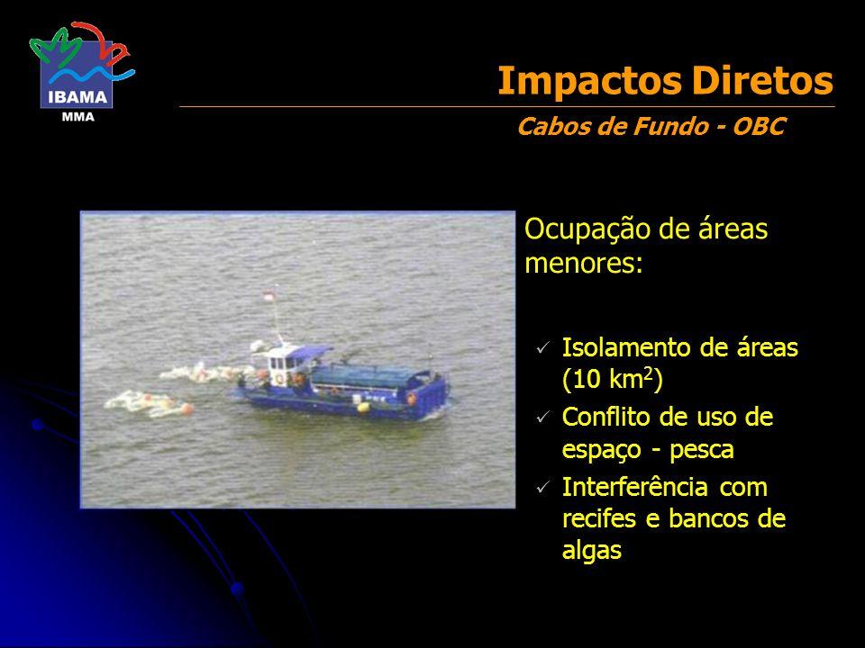 Impactos Diretos Ocupação de áreas menores: