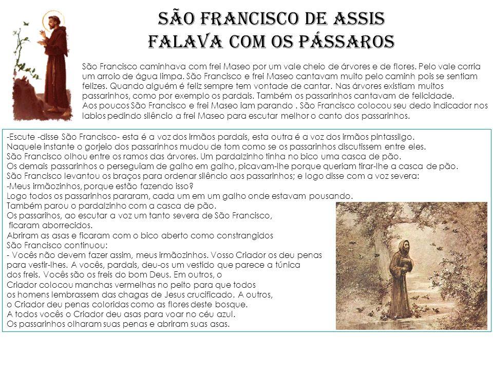 SÃO FRANCISCO DE ASSIS FALAVA COM OS PÁSSAROS