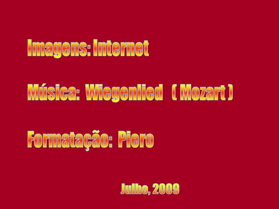 Música: Wiegenlied ( Mozart )